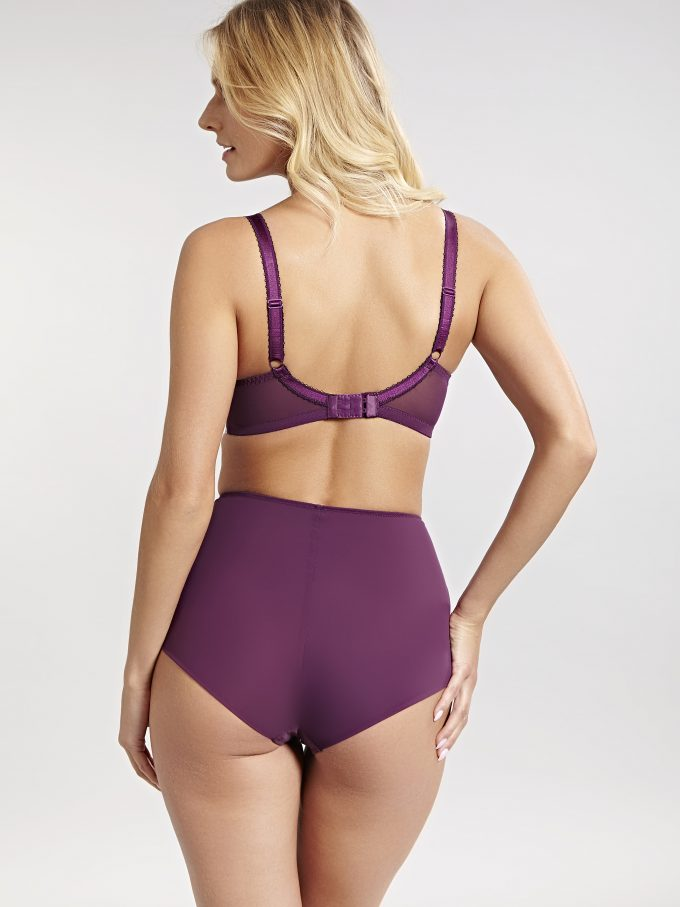 daa0796e5 Panache Clara Purple High Waist Briefs - Eve Lingerie